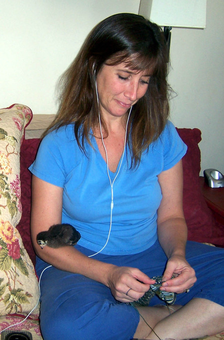 Knitting_with_turkey