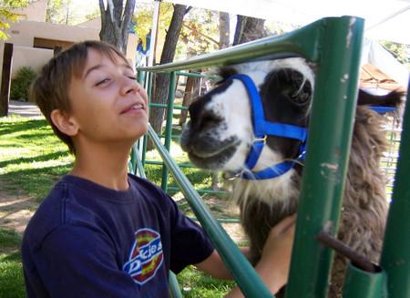 Robert_and_llama