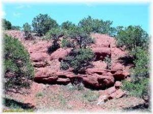 Coloradorocks